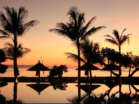 Schöner Sonnenuntergang hinter Palmen